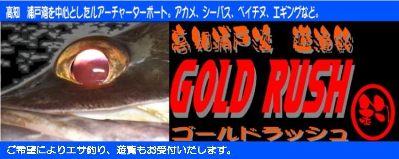 高知 浦戸湾 遊漁船GOLD RUSH