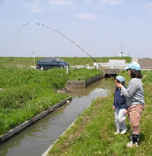 2003年4月27日 手賀沼周辺